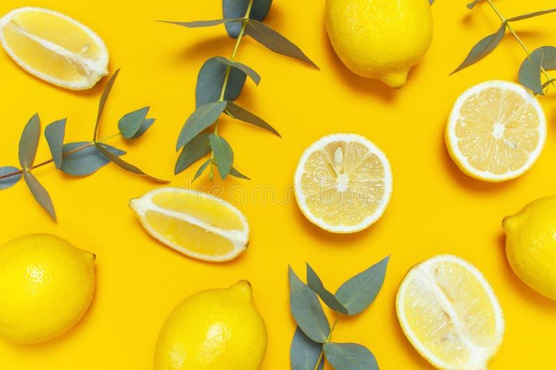 Ripe juicy lemons and green eucalyptus twigs on bright yellow background. Lemon fruit, citrus minimal concept. Creative summer. Food minimalistic background royalty free stock photos