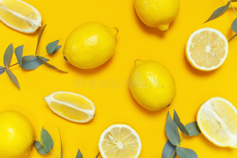 Ripe juicy lemons and green eucalyptus twigs on bright yellow background. Lemon fruit, citrus minimal concept. Creative summer. Food minimalistic background stock photos