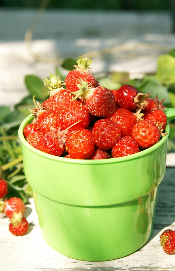 Ripe juicy strawberries in a green cup