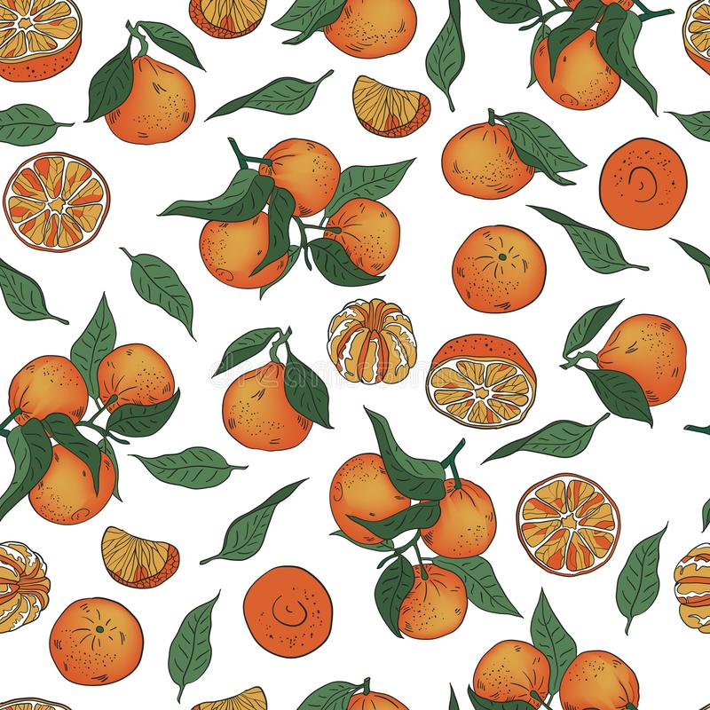 Seamless vector pattern of whole and peeled tangerines and leaves on a white background stock illustration
