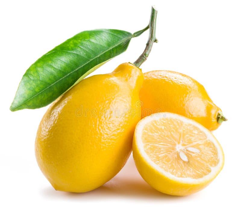 Ripe lemon fruits on the white background. stock photo