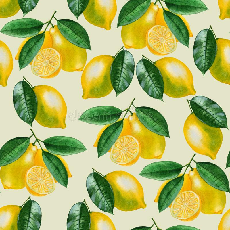 Ripe lemons Watercolor set. Citrus pattern on light green background. Design elements for background, banner,holiday card design. Hand painting artistic stock illustration