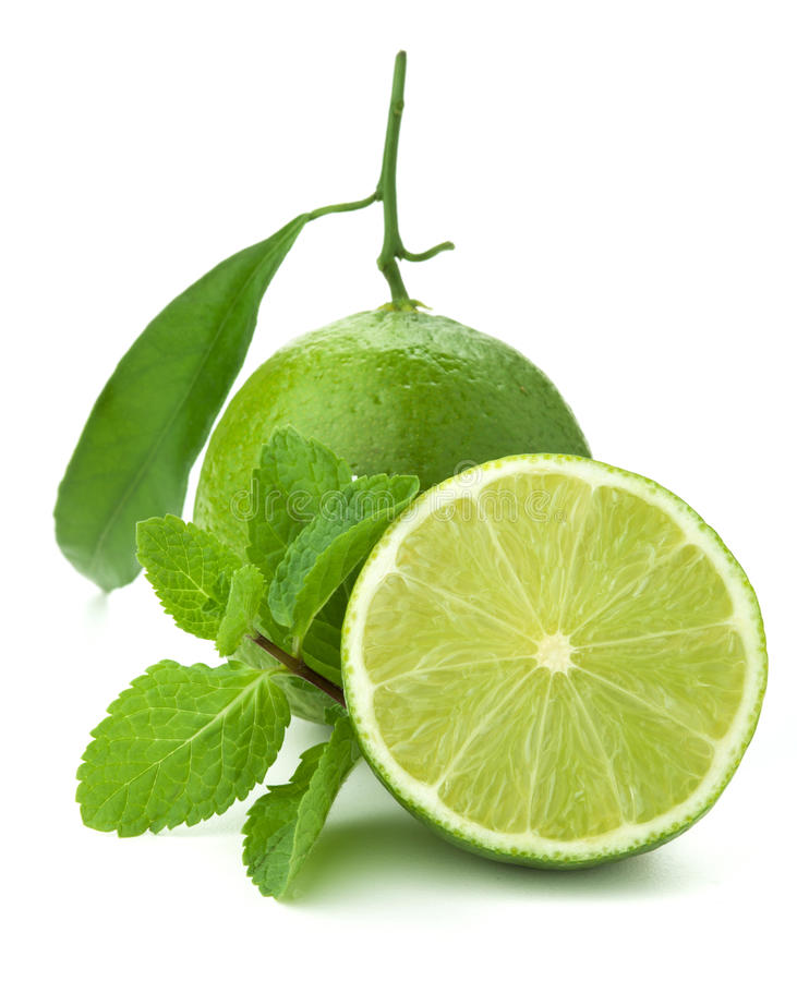 Download Ripe lime and mint stock image. Image of fresh, closeup - 17445909