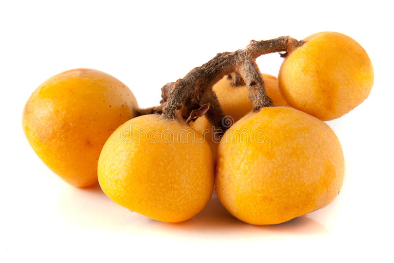 Ripe loquat or Eriobotrya japonica with leaf isolated on white background.  stock images