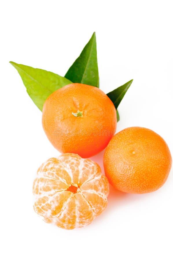 Ripe mandarin citrus isolated tangerine mandarin orange on white royalty free stock photography