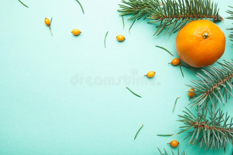Ripe mandarin, sea buckthorn and needles, Christmas background.  royalty free stock image