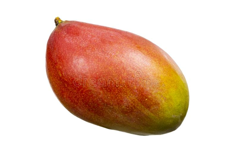 Ripe mango fruit isolated on white. Red yellow sweet mango fruit on white background. Apetit ripe whole mango stock image