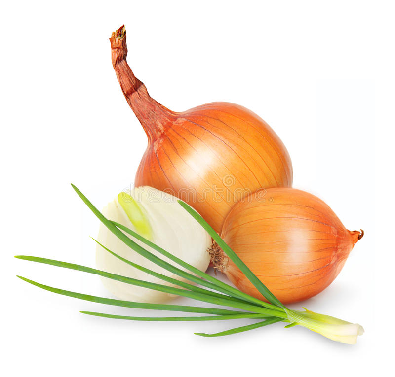 Ripe onion isolated. On a white background royalty free stock photo