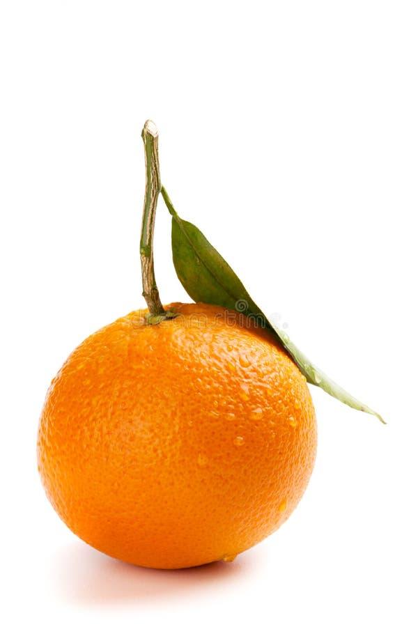 Download Ripe Orange Fruit With Leaf Stock Image - Image: 30982259