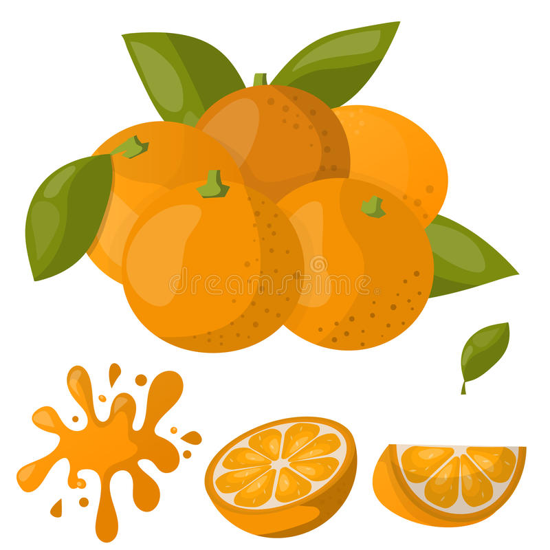 Ripe orange products fruits citrus slices sweet food realistic organic vector illustration. stock illustration