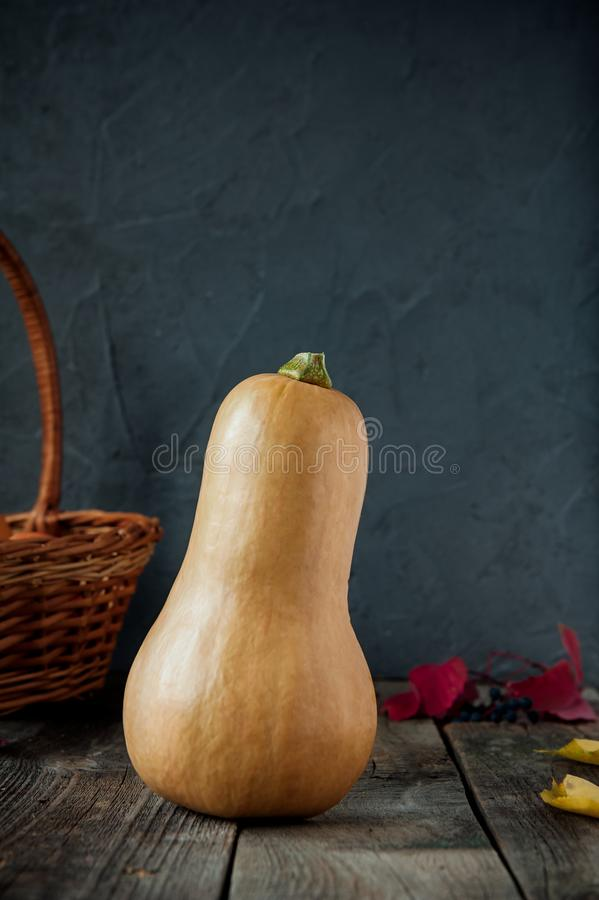 Ripe orange pumkin stading on the rustic wooden table on the dark stone background. Vegetarian, Autumn harvest, thanksgiving, hall royalty free stock images