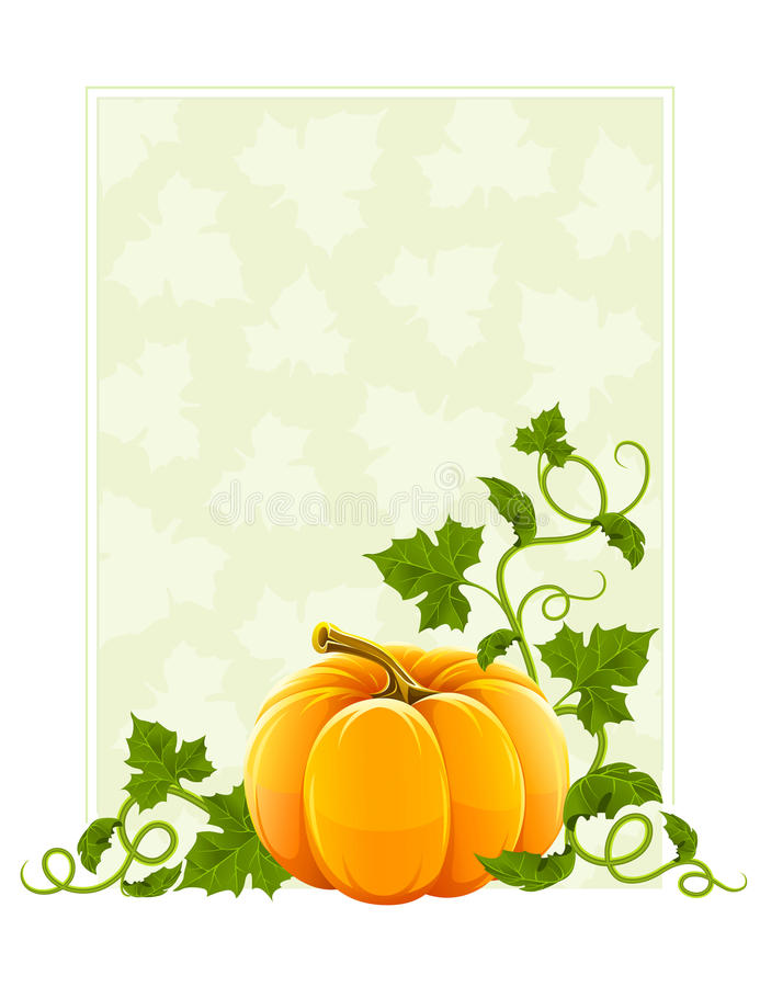Ripe orange pumpkin vegetable with green leaves. Illustration, isolated on white background