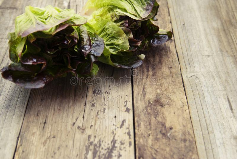 Ripe organic green salad Romaine lettuce leaves, on wooden board. Copy space. Healthy food. stock image