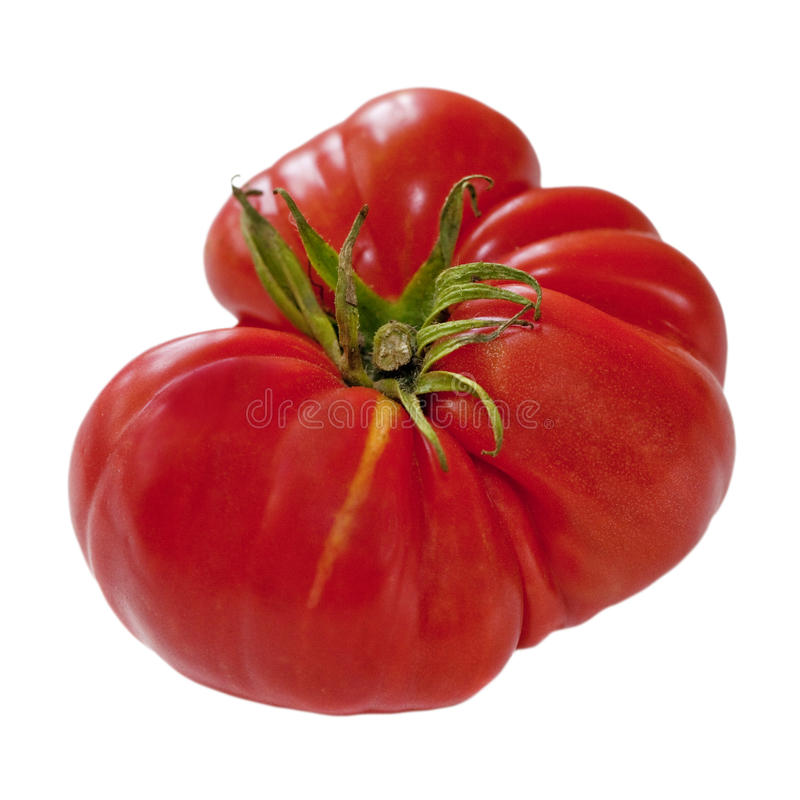 Ripe Ox-Heart Tomato  Isolated on White