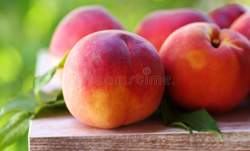 Ripe peaches , closeup on white table royalty free stock photography
