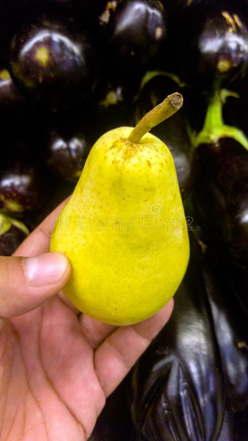 Ripe pear held in man`s hand with eggplants in the background. stock image