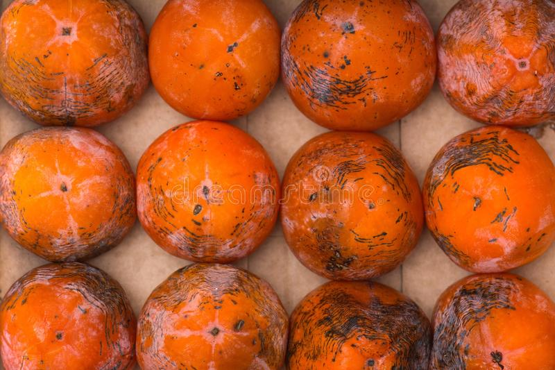 Persimmon. The frozen persimmon of a winter crop stock photo
