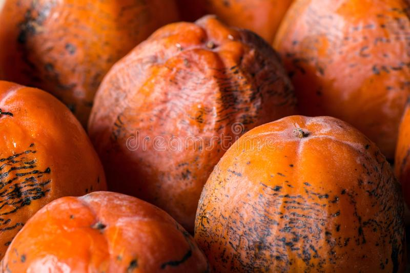 Persimmon. The frozen persimmon of a winter crop royalty free stock photos