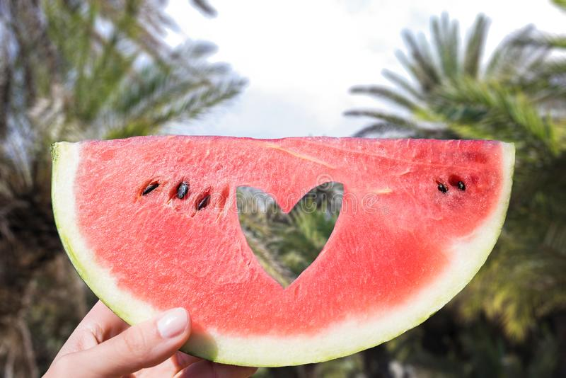 Ripe piece of watermelon with heart shape hole in female hands on the background of the palm forest a hot summer day. Concept.. Ripe piece of watermelon with royalty free stock photography