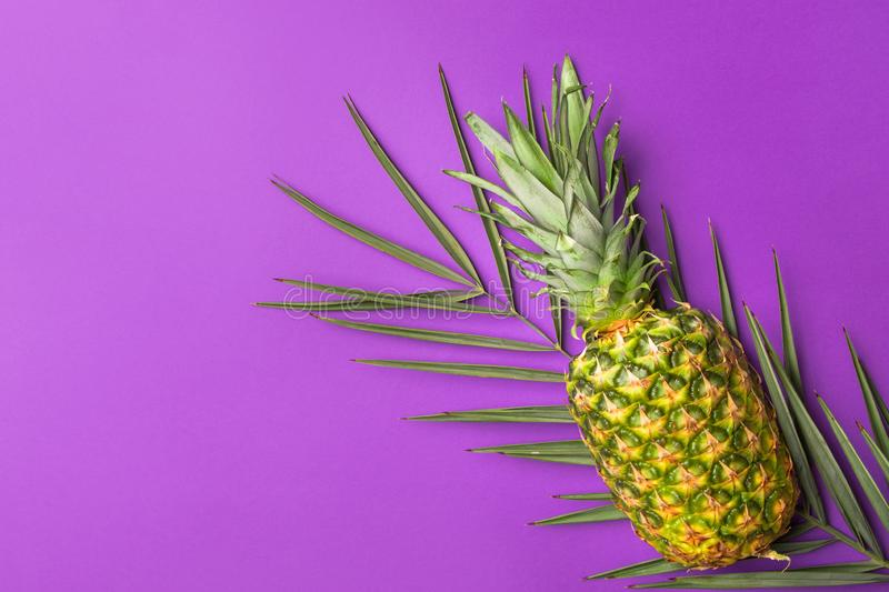 Ripe pineapple on green palm leaf on vibrant violet purple solid background. Trendy funky style neon colors. Summer vacation. Tropical theme beach party.Flat stock image