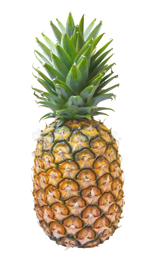 Pineapple isolated in white royalty free stock image