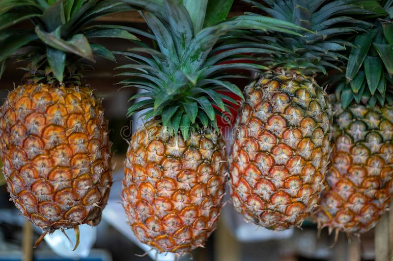 Ripe pineapples with green leaves on market stall. Yellow pineapple for sell. Tropical fruit on natural farm market royalty free stock images