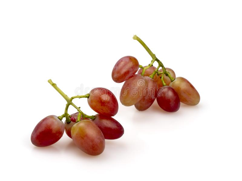 Ripe pink grapes. Two clusters of ripened berries. On a white background. Close-up stock images