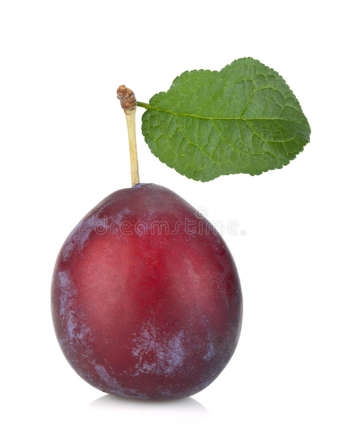 Download Ripe plum stock image. Image of fructose, juicy, nature - 27018391