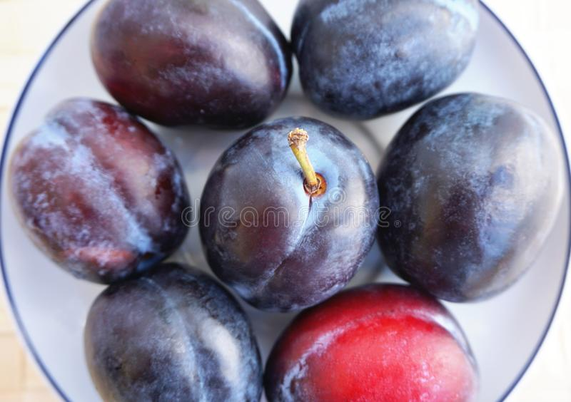 Ripe plums, Prunus on the tea plate, close up view royalty free stock photo