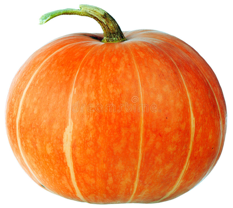 Ripe pumpkin isolated royalty free stock images