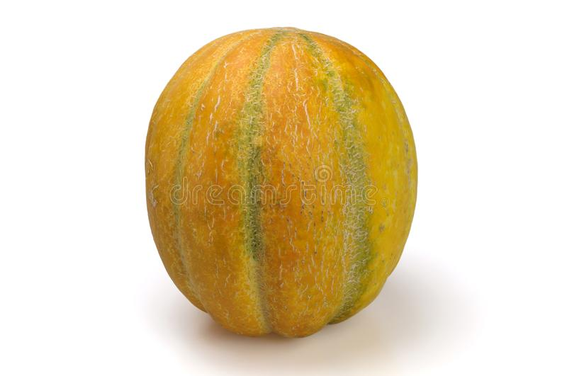 Ripe pumpkin shaped melon stock image