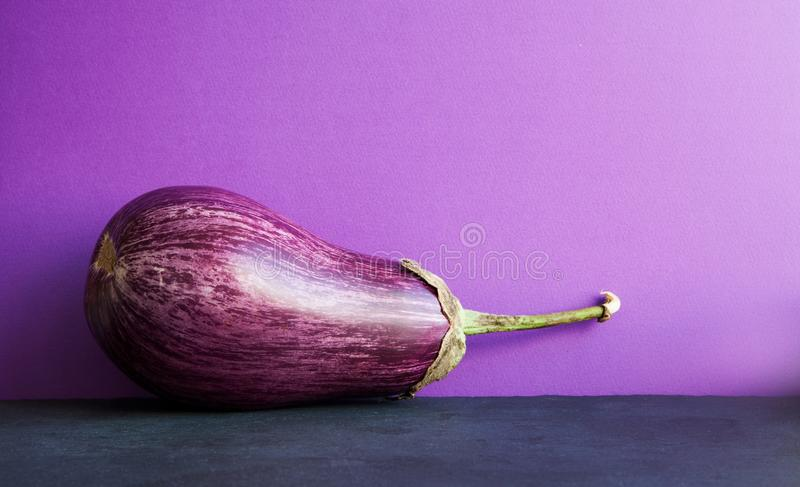 Ripe purple eggplant on violet black background. Organic vegetable with beautiful striped pattern. Copy space.  stock photography