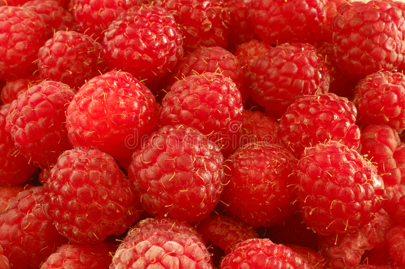 Download Ripe raspberries stock photo. Image of delicious, eating - 1410892