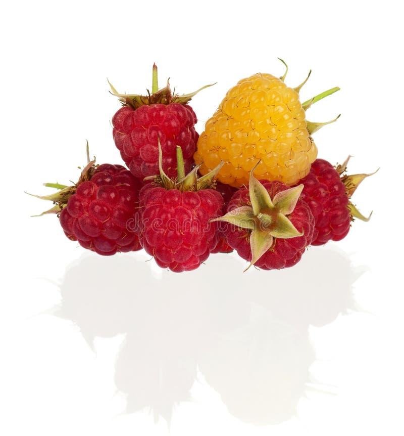 Download Ripe raspberries stock photo. Image of healthy, indoors - 26925086