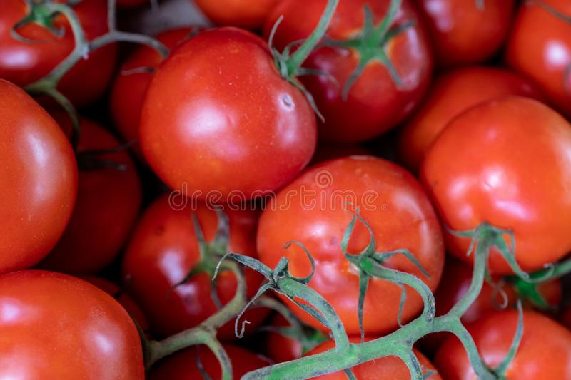 Ripe raw fresh big red tomatoes in the box in vegetables market stock photography
