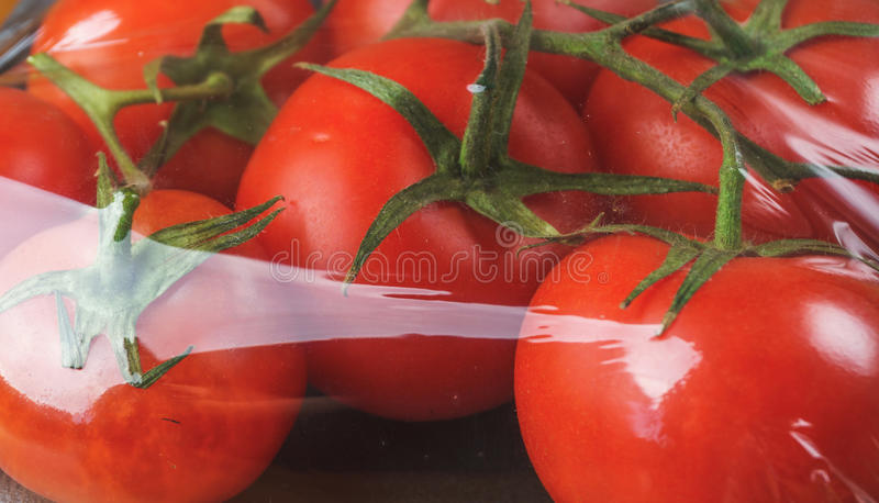 Ripe raw red tomatoes in cellophane packaging royalty free stock image