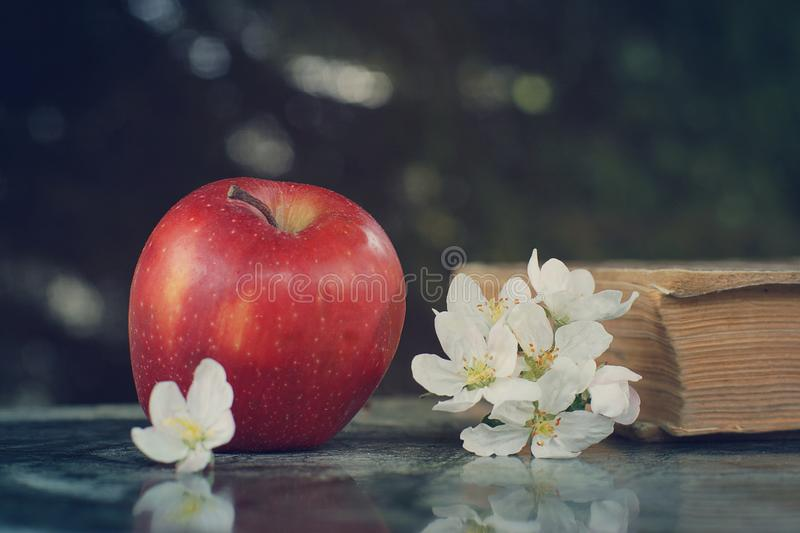 Ripe red apple and delicate white flowers on the table stock photos
