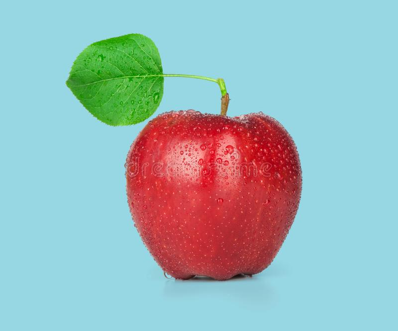Ripe red apple with a leaf royalty free stock photo