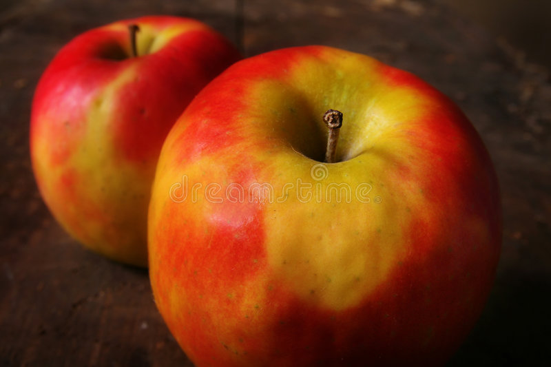 Ripe red apples stock photos