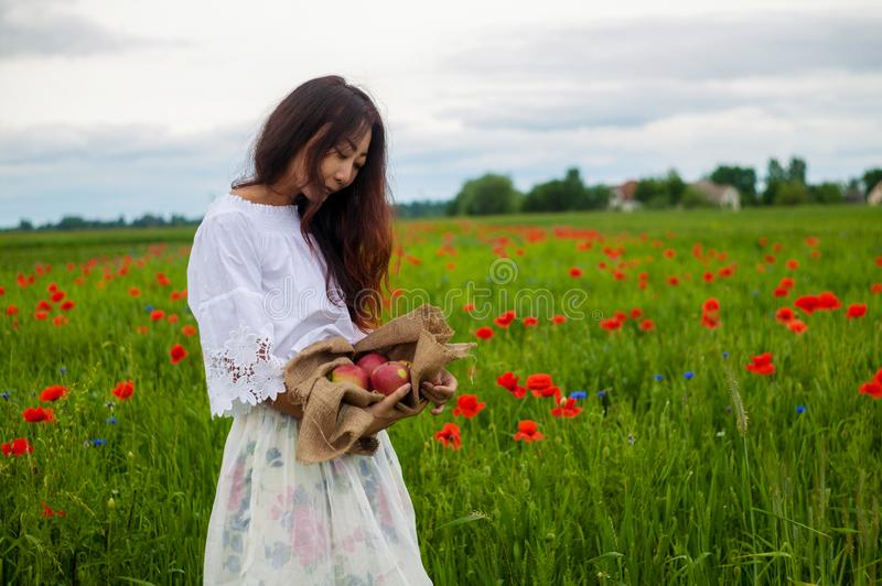 Ripe red apples held out in a asian girl`s hand on green field.  Healthy lifestyle concept. stock image