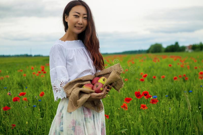 Ripe red apples held out in a asian girl`s hand on green field.  Healthy lifestyle concept. Ripe red apples held out in a asian girl`s hand on green field in stock images