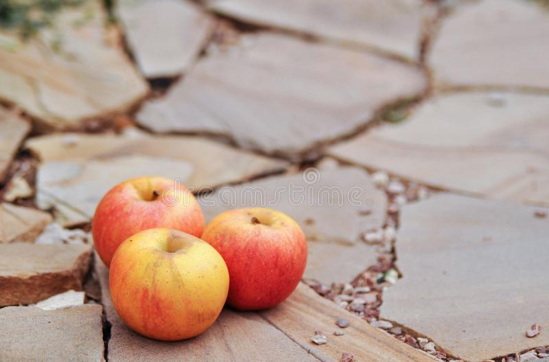 Ripe red apples on a stone background. The harvest in the fall. royalty free stock images