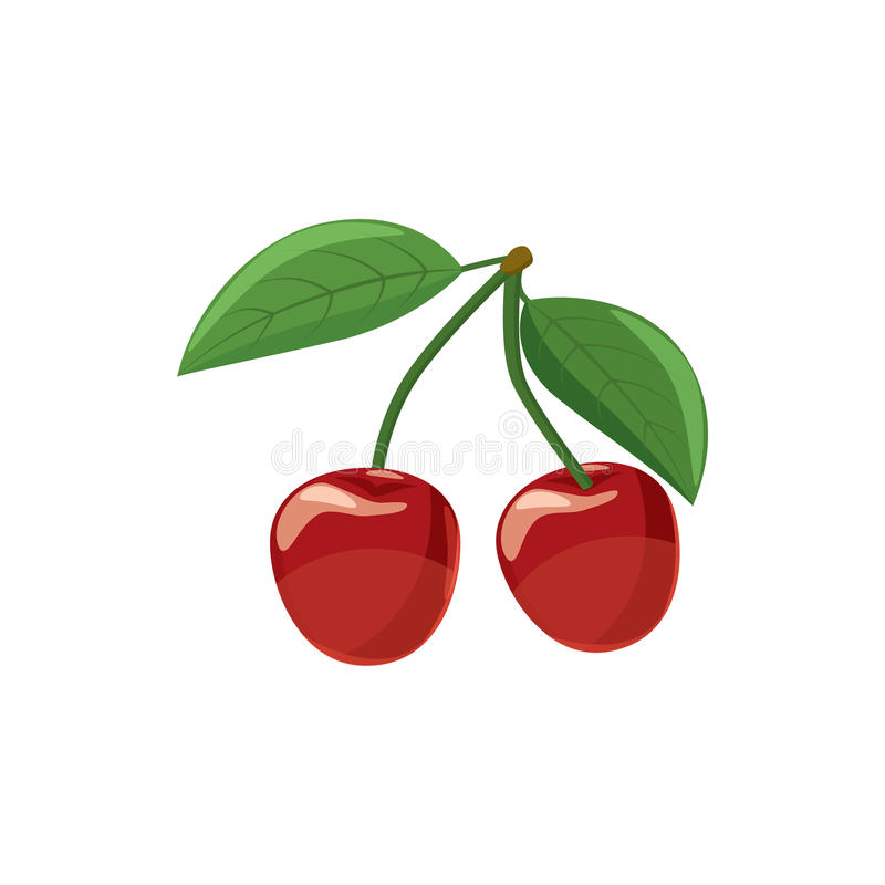 Ripe red cherry berries with icon, cartoon style. Ripe red cherry berries with icon in cartoon style on a white background vector illustration