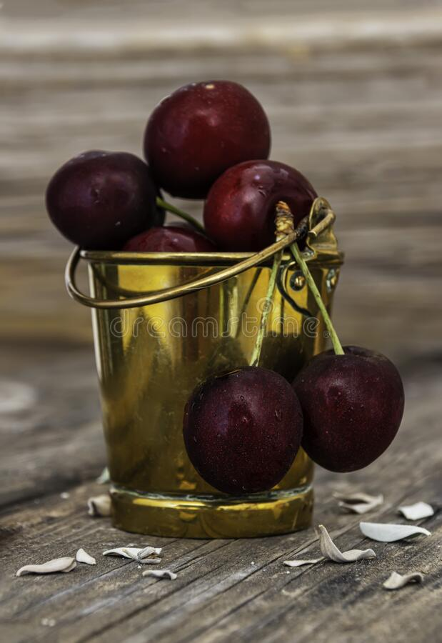 Ripe red cherry berries with water drops on them in a metal bucket on a wooden surface. Ripe red cherry berries with water drops on them close-up in a metal royalty free stock photo
