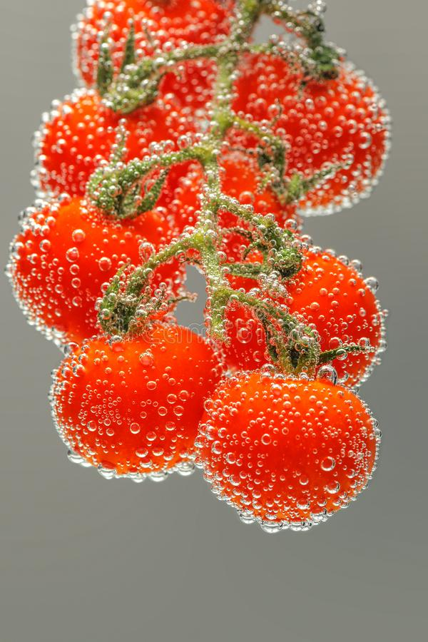 Ripe red cherry tomatoes stock image