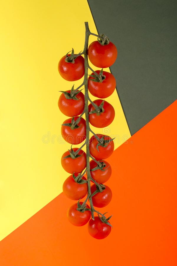 Ripe Red Cherry Tomatoes on Colored Background stock photo
