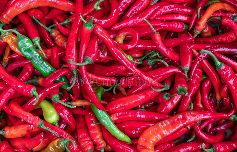 Ripe red chilli pepper for background texture, close-up, top view, copy space for text royalty free stock image