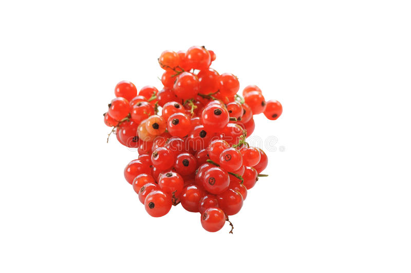 Ripe red currant berries isolated on white background. The horizontal frame royalty free stock images