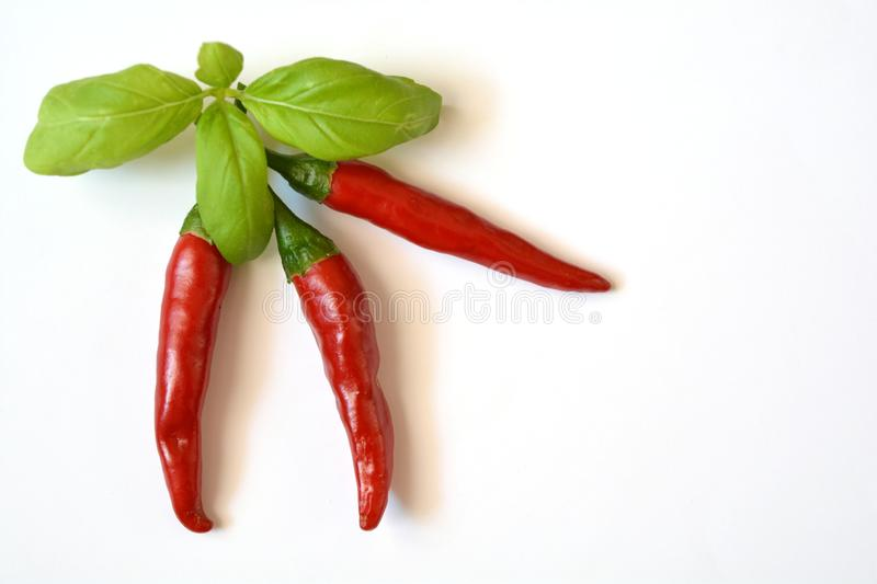 Ripe red hot Chilli close royalty free stock images