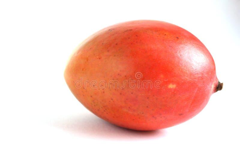Ripe red mango isolated white background royalty free stock images